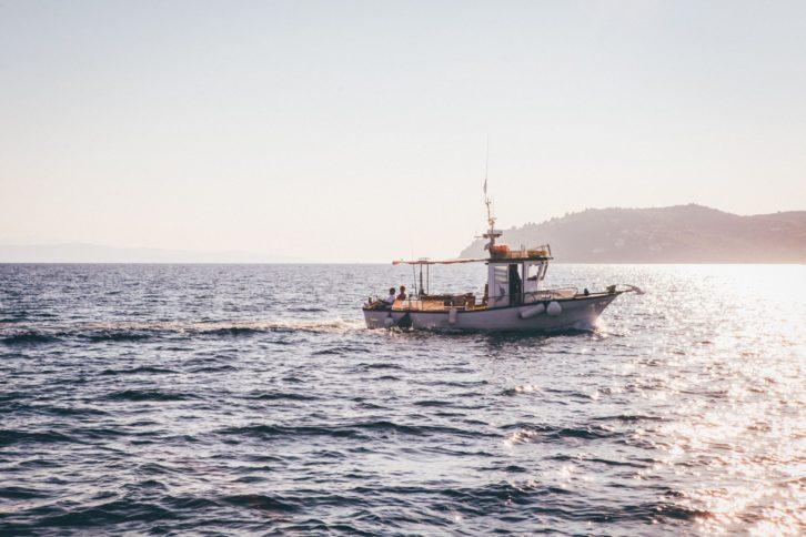 Fischer und der Sinn des Lebens